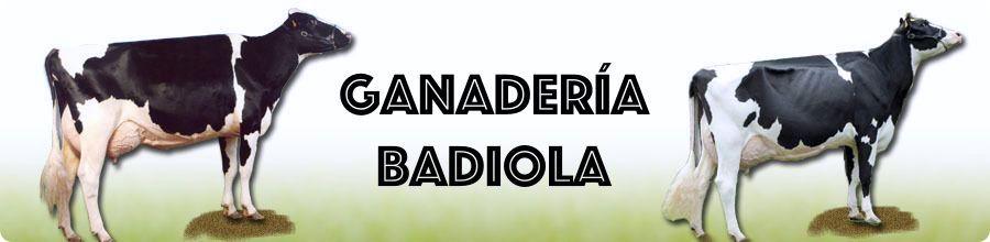 Ganadería Badiola